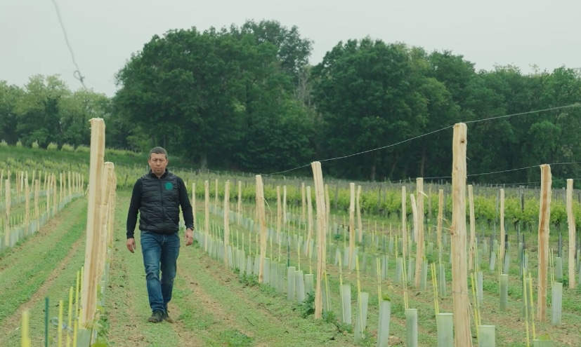 PVVL accompagne et conseille les viticulteurs pour développer leurs exploitations viticoles et répondre aux nouvelles exigences de la profession.